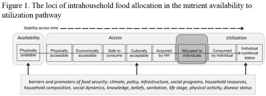 The loci of intrahousehold food allocation in the nutrient availability to utilization pathway