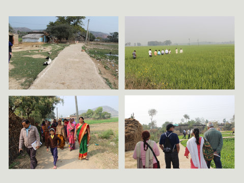 Transect Walks through Villages
